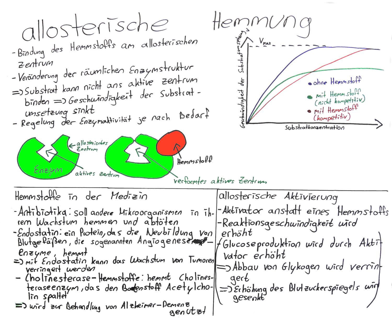 Cytologie Die Allosterische Enzymhemmung