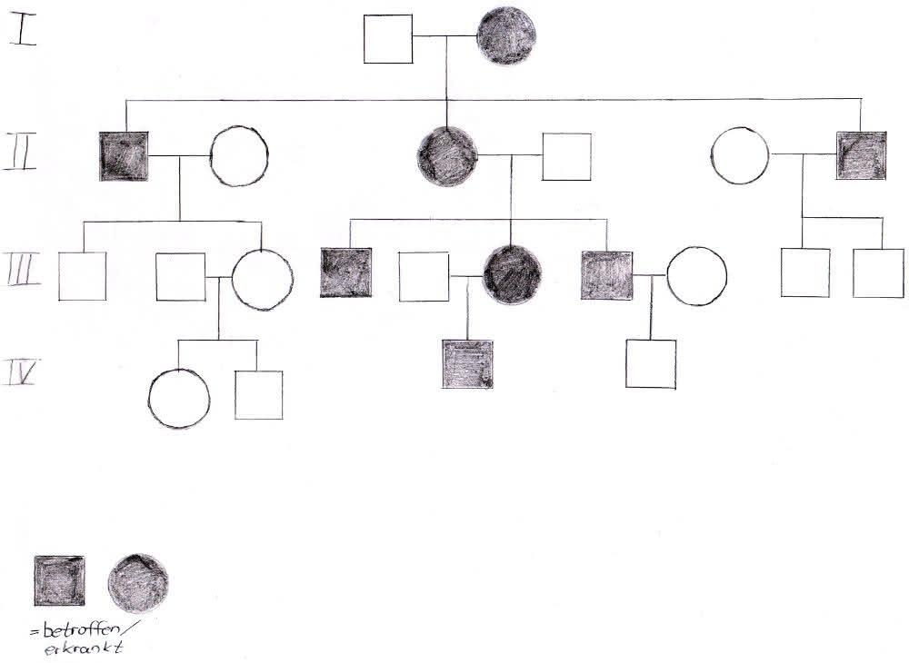 Genetik: Extranucleäre Vererbung durch Mitochondrien