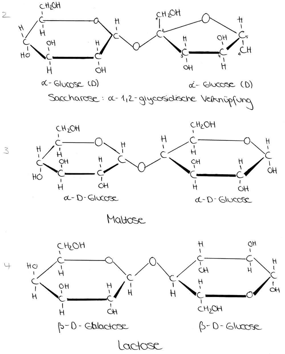 Organische Chemie Kohlenhydrate Disaccharide